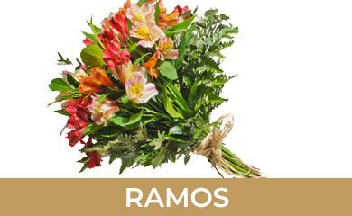 Ramos de flores en la gardenia floristeria